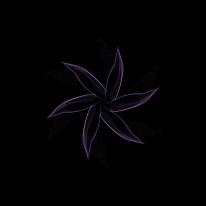 rose-life-2