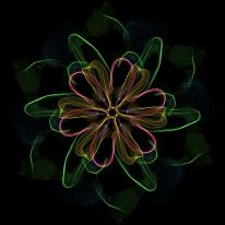 rose-life-3